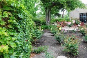 Rose Garden Patio